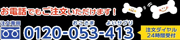 お電話でもご注文いただけます! 0120-053-413 注文ダイヤル24時間受付